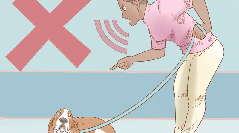 How To Train A Dog To Walk On A Leash Beside You and Training A Dog To Stay In Yard