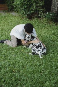 So where do you start with dog obedience training?